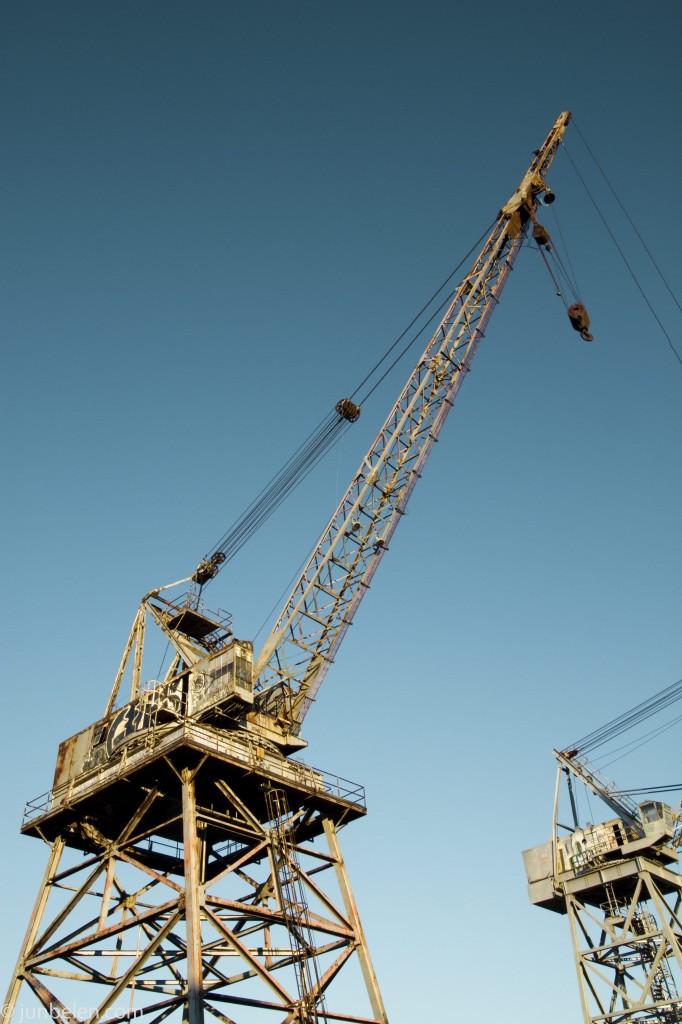 Dogpatch Cranes