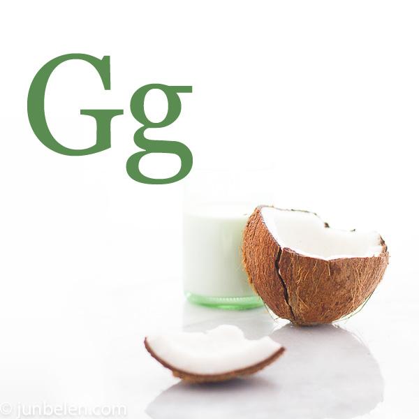 Glossary-G