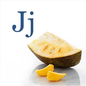 J-Glossary