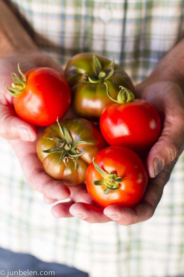 New Girl and Black Krim Tomatoes